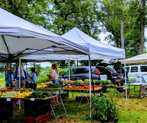 More Farmers Market Adventures