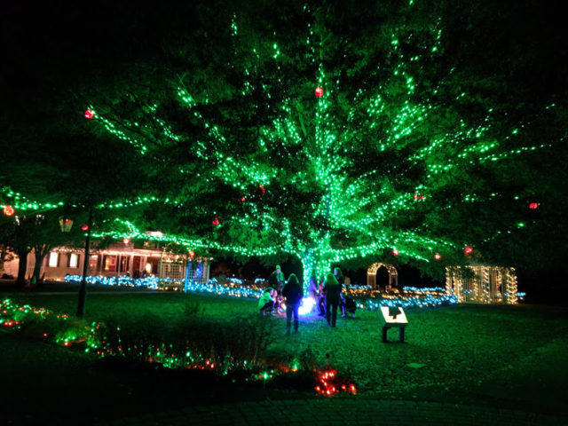 Christmas at Lewis Ginter Botanical Garden by Cherie R. Blazer