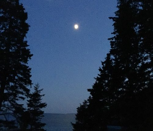 Boomer Rediscoveries: Stargazing